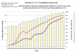 Obesity vs GMO crops planted